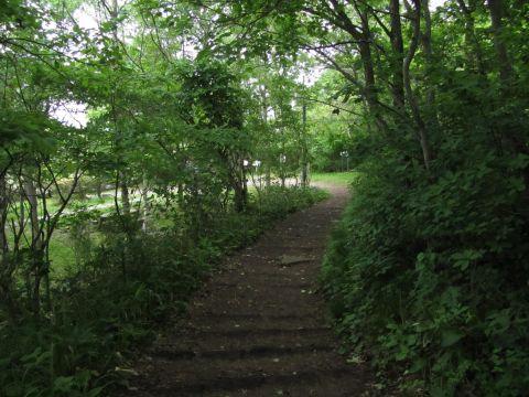 旧登山道口付近
