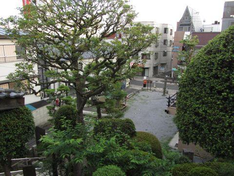 富士塚より浅間神社境内を望む