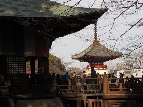 喜多院慈恵堂と多宝塔