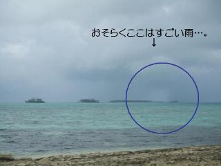 この島は雨を逃れましたが・・・