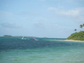 ウィンドサーフィン、レンタルみたいです