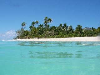 綺麗だったよ、無人島