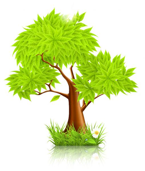 緑の樹木 Green tree vector