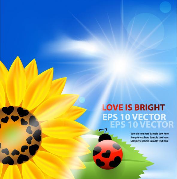 向日葵とてんとう虫の背景 Sun flower with blue sky background