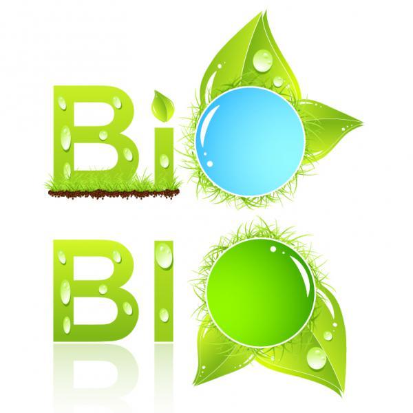 緑の植物 バイオ ラベル Bio labels vector graphic
