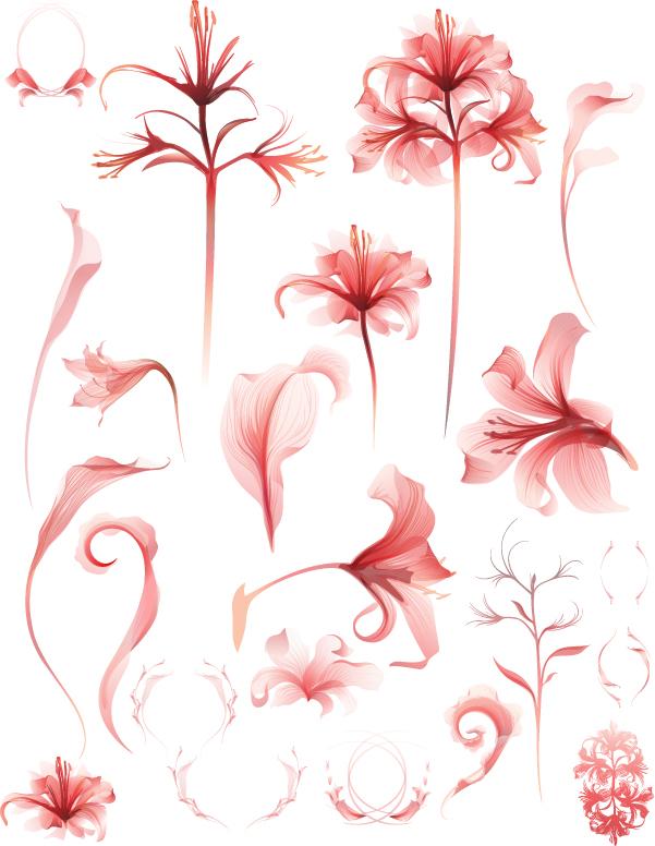淡い色合いの花弁 nature plants flower