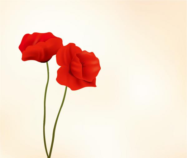 真っ赤な花弁の背景 red flowers vector material イラスト素材