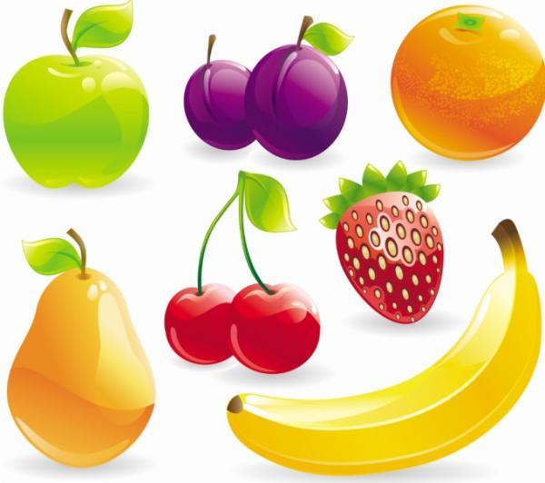 fruit-berry-vector.jpg