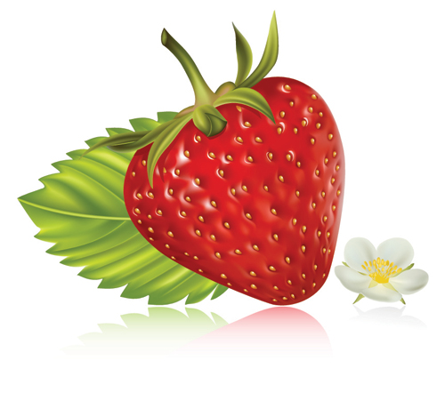 strawberry-fruit-e.jpg