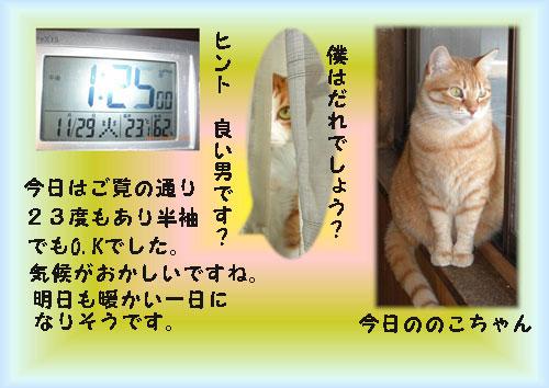 ondo22-のコピー