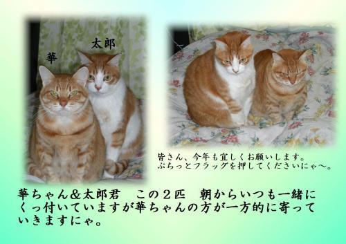 闖ッ・・、ェ驛酸convert_20120105204954