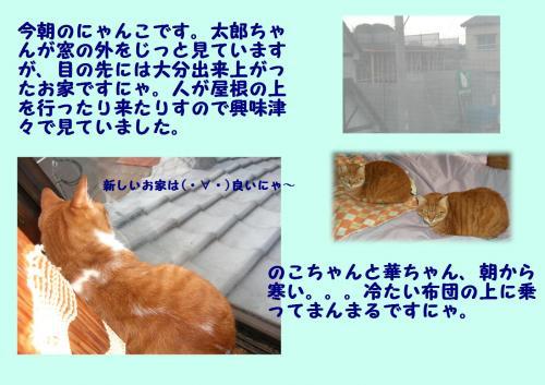 繧ヲ繝\convert_20120111223129