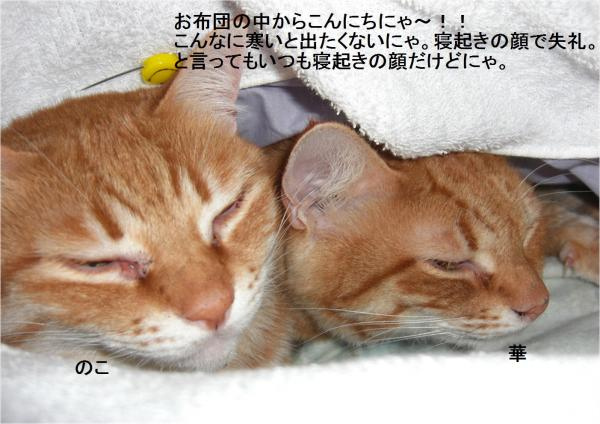 繧オ繝?_convert_20120125204354