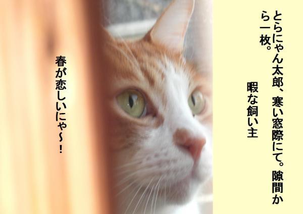 繧ケ繧ュ繝枩convert_20120131205833