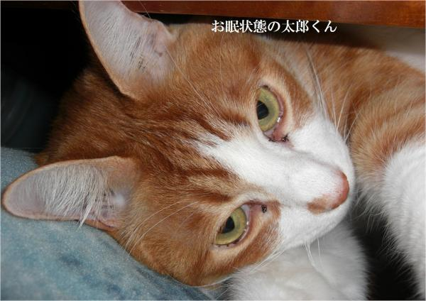 繝阪Β_convert_20120304205557