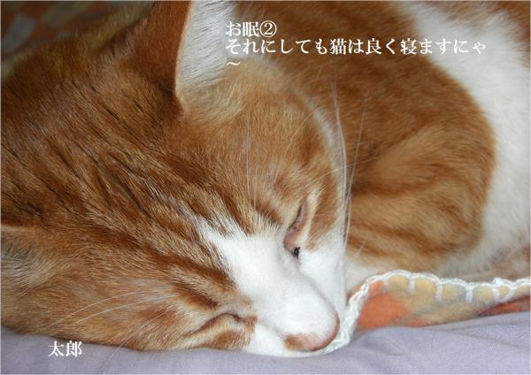繝阪Β2_convert_20120304205634