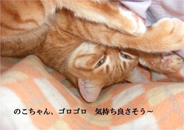 縺阪b_convert_20120314222336