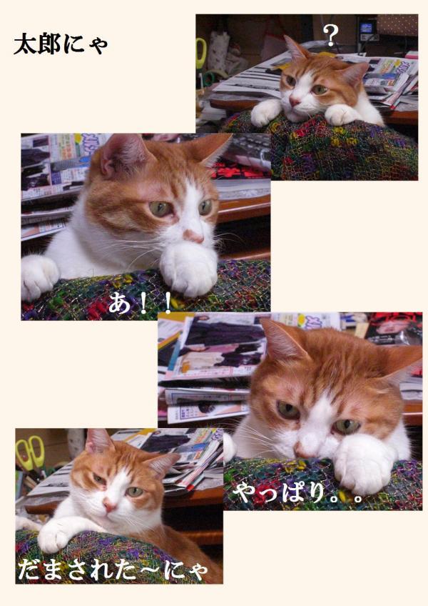 繝昴・_convert_20120315220535