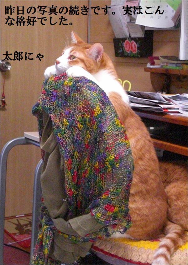 繝昴ず_convert_20120316212742