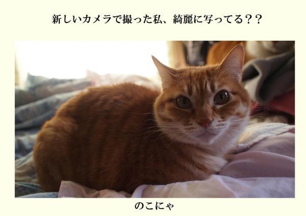 縺阪l縺Юconvert_20120319231238