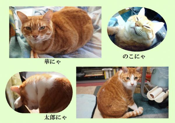 繧ォ繧ッ_convert_20120321220736
