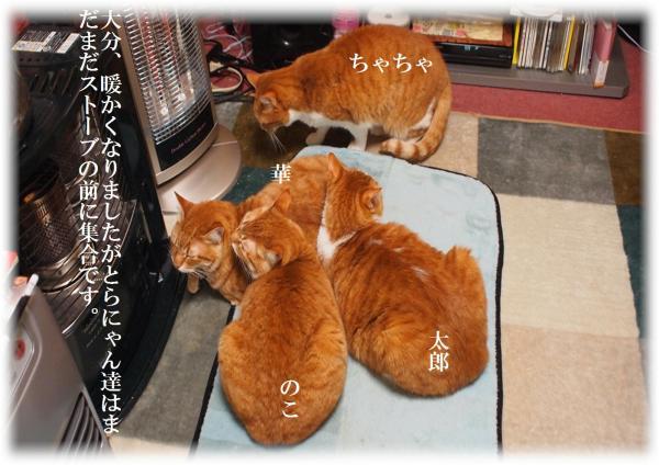繧セ繝ュ_convert_20120322221613