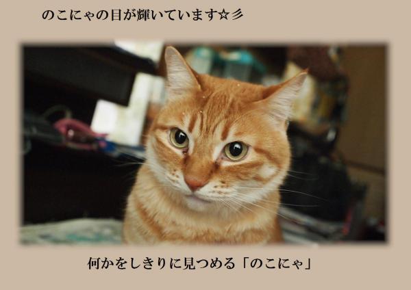 繧\convert_20120327214631