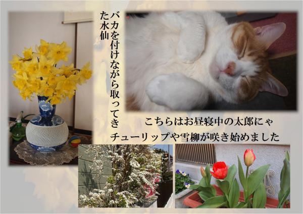 繝上リ_convert_20120330192701