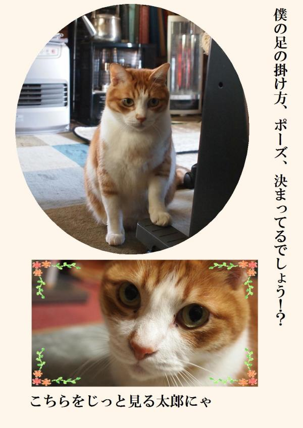 繝昴・繧コ_convert_20120330192729