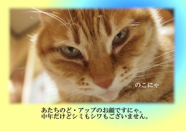 繧ォ繧ェ_convert_20120401212741