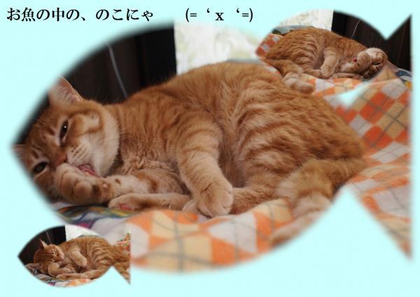 縺輔°縺ェ_convert_20120404202242