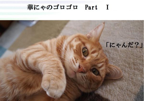 縺ェ_convert_20120408193911