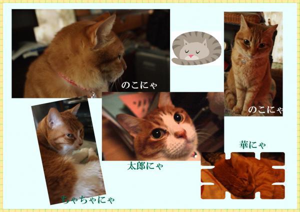 縺懊s縺カ_convert_20120409221120