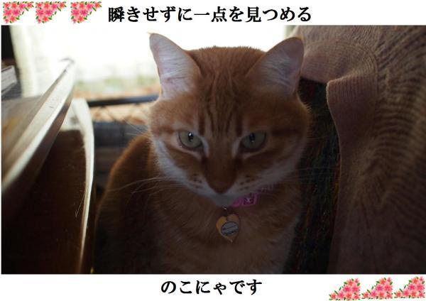 縺・■_convert_20120411220448