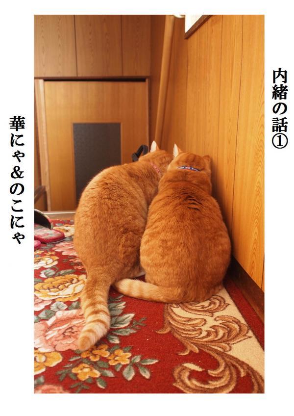 蜀・キ胆convert_20120412211433