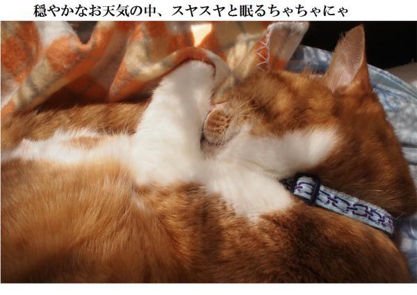 縺ュ繧?繧垣convert_20120413222446