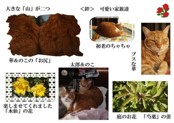 繧ュ繧コ繝垣convert_20120414220832