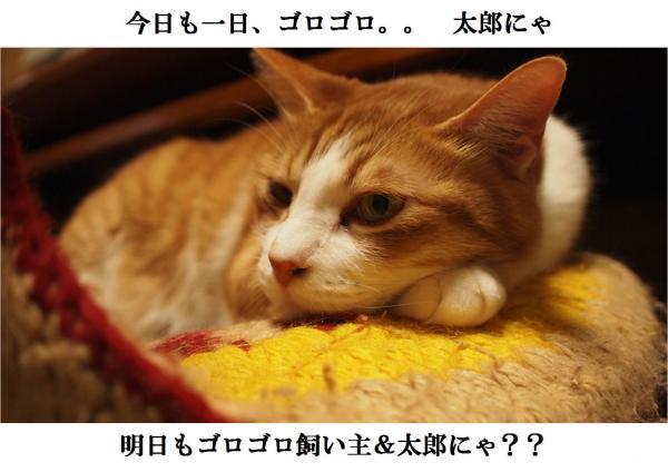 繧エ_convert_20120415192312