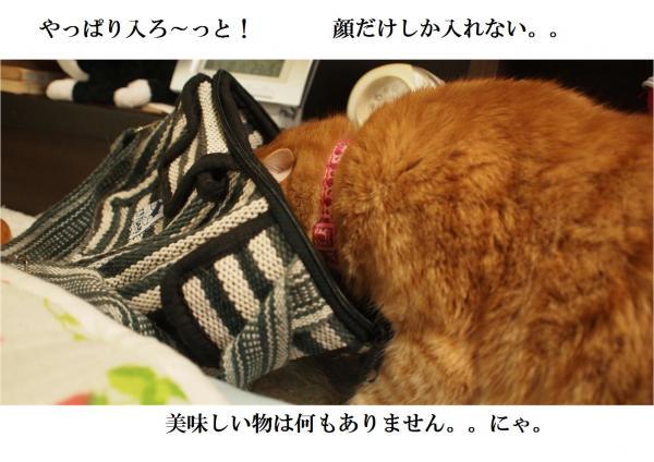 縺オ縺上m2_convert_20120417223959