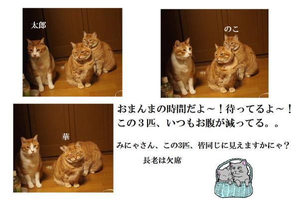 縺ソ縺ォ繧ダconvert_20120419221110