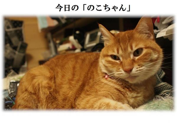縺ョ_convert_20120419221025