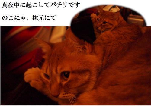 縺セ繧・convert_20120422205532