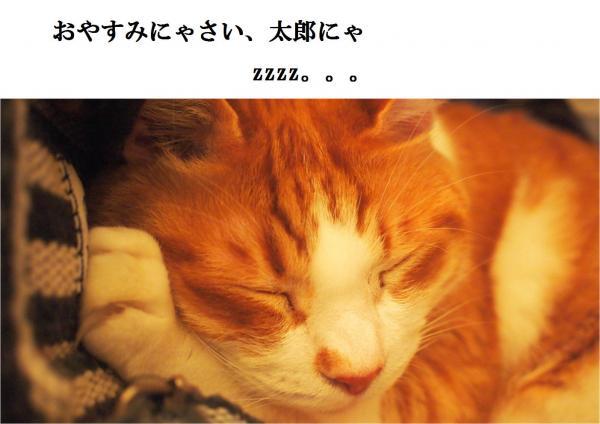 繧ェ繝、_convert_20120425215122