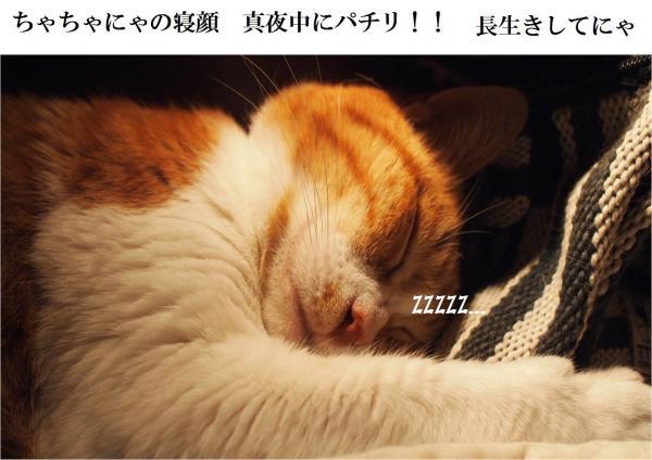 縺ュ繧?_convert_20120503211636