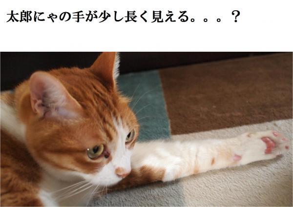 縺ヲ_convert_20120508213108