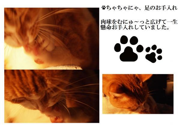縺ォ縺・_convert_20120509215042
