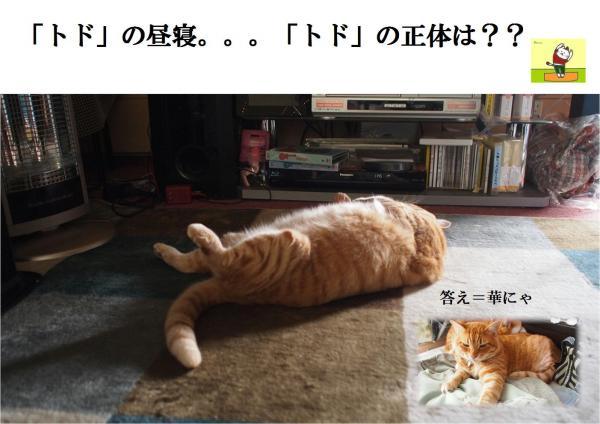 繝医ラ_convert_20120511221134