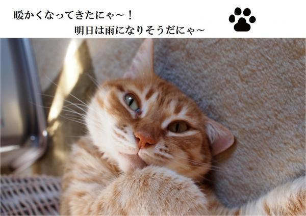縺ゅa縺ョ_convert_20120513212810