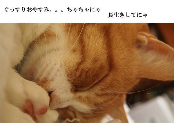 繧ー_convert_20120515213213