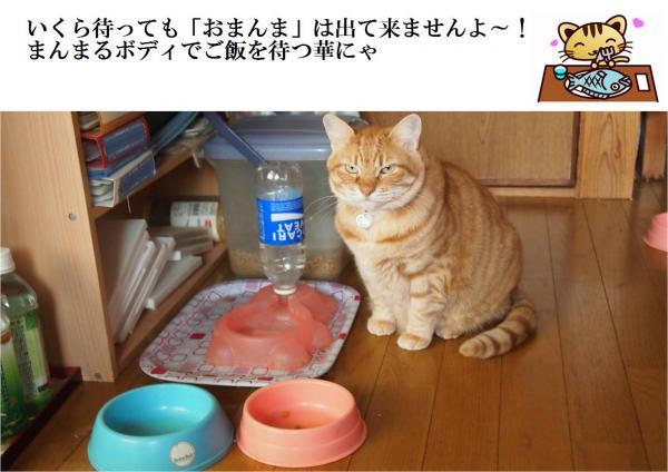 繝輔・繝雲convert_20120517223430